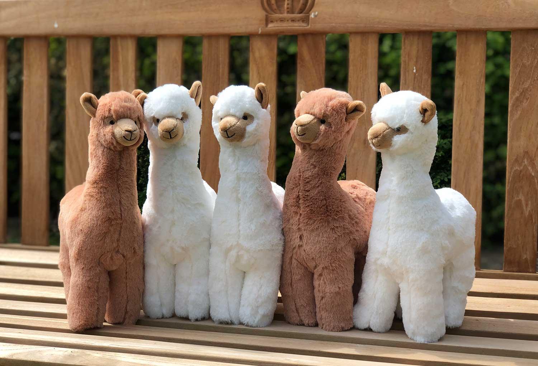 Alpaka Stofftiere